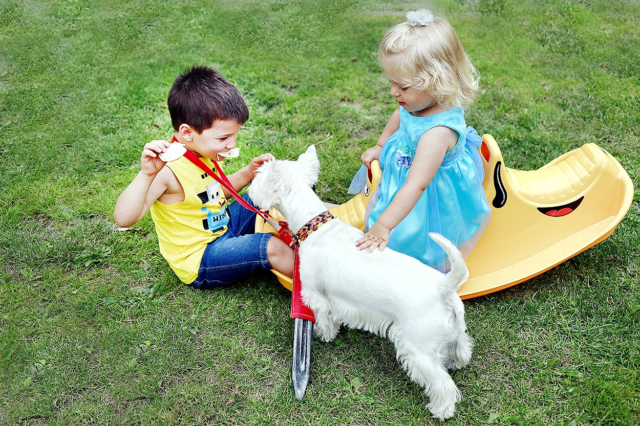 dzieci z psem