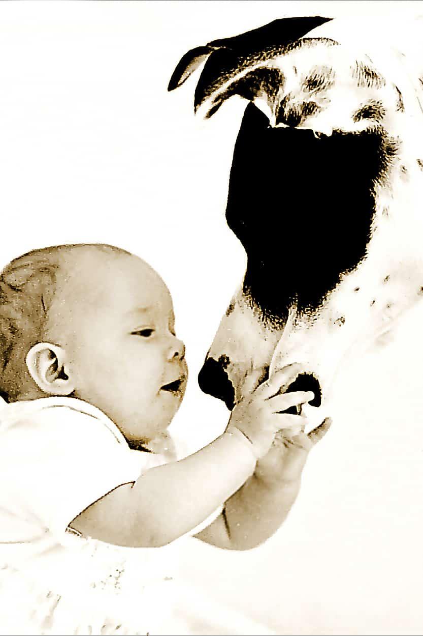 zabawa niemowlaka z psem na sesji zdjęciowej